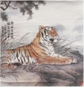 "Rollbild ""Tiger in Berglandschaft"", Aquarell/Tuschezeichnung/Papier, sign., Bildmaß46x44,5 c"