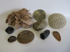 Konvolut von 9 diversen Edelsteinen u.a., Sandrose, Koralle, Achat etc.