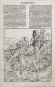 Erschaffung der EvaHolzschnitt, aus: Schedelsche Weltchronik, Nürnberg 1493, 41 x 26 cm, gerahmt