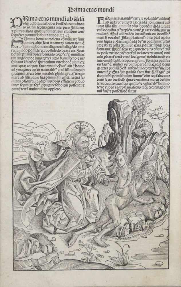 Erschaffung der EvaHolzschnitt, aus: Schedelsche Weltchronik, Nürnberg 1493, 41 x 26 cm, gerahmt unter Glas und Passepartout