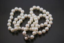 Perlenkette, 585 Weißgoldverschluß
