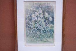 Umgelter Hermann 1891-1962« Märzbecher «Aquarellre.u.Sig.u.Dat.1950Blatt Größe: 18x27gerahmt
