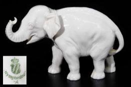 Junger Elefant, Rüssel aufwärts. NYMPHENBURG, Marke 1976 - 1997.