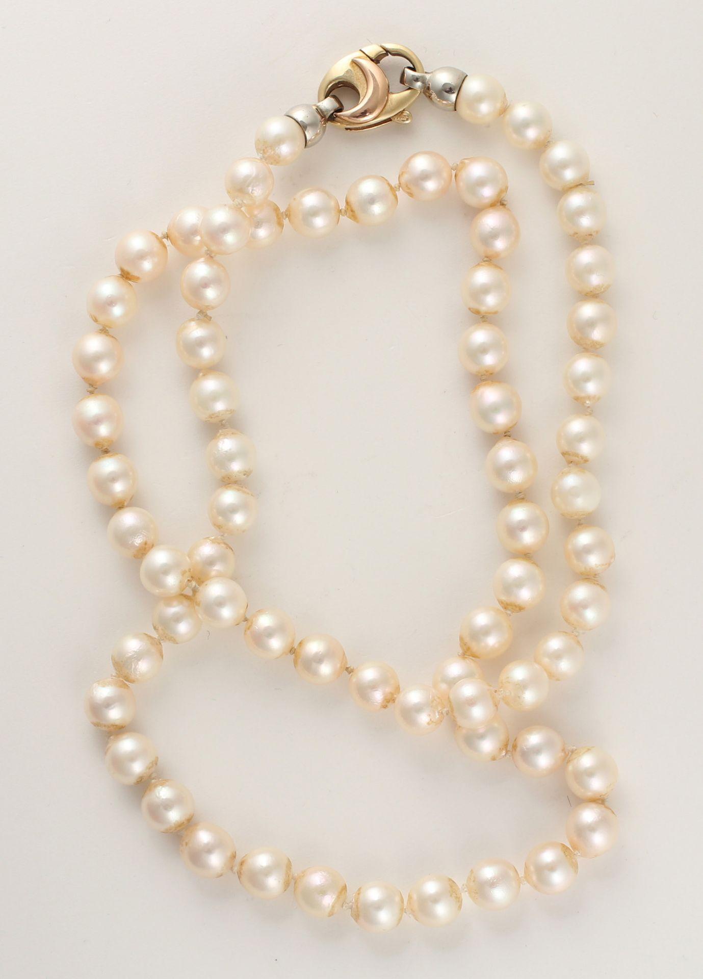 Zuchtperlcollier, aus 66 Perlen