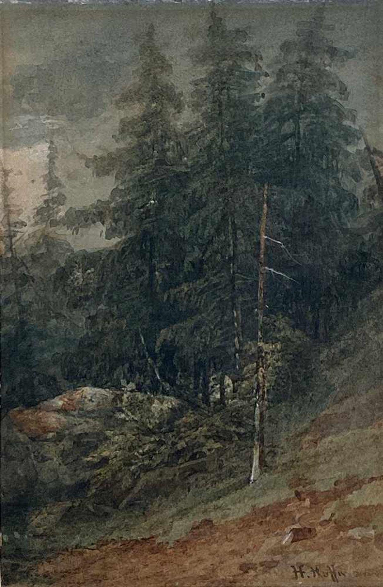 Heinrich Hoffmann 1859-1933