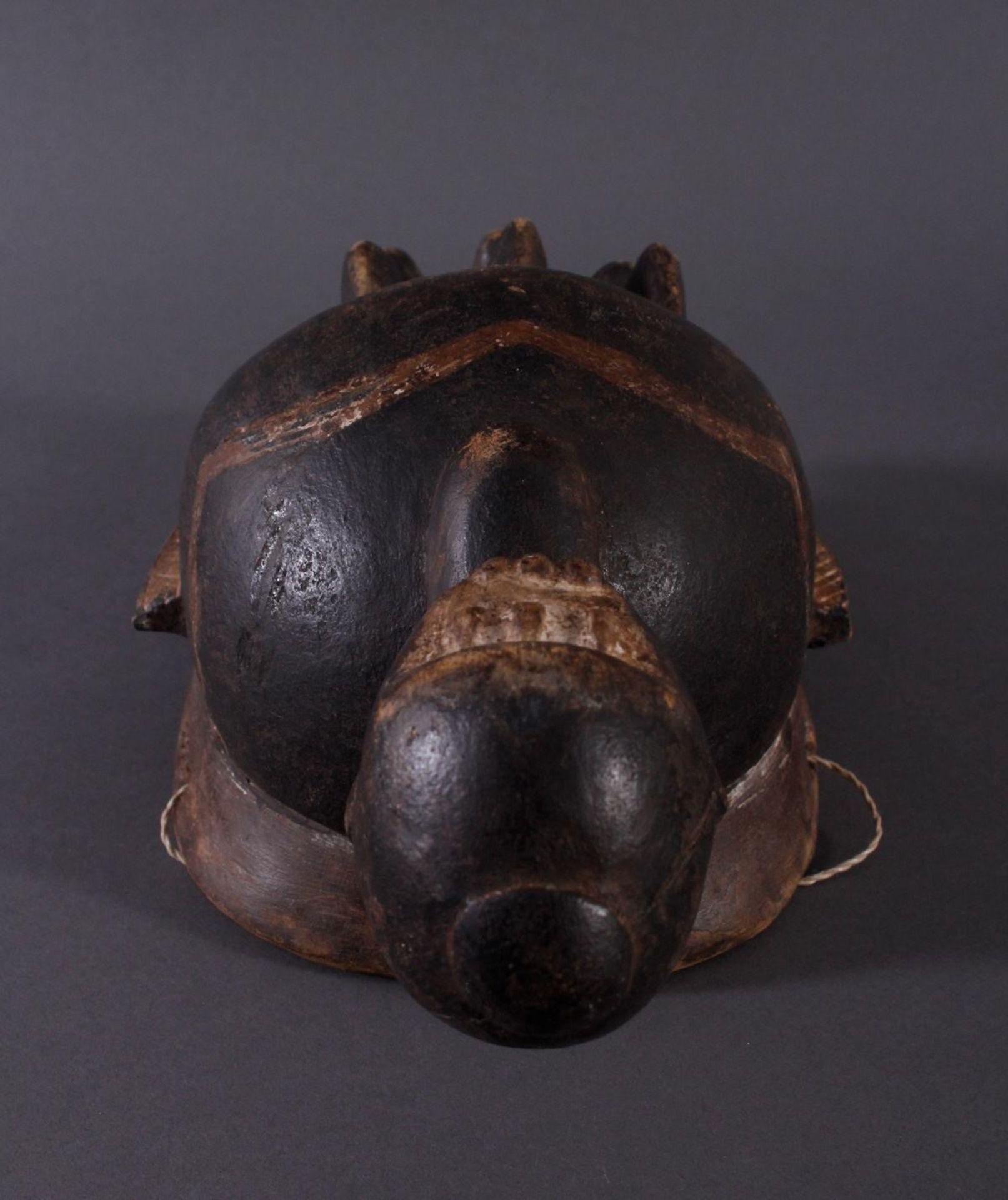 Antike Kpelie-Maske, Senufo 1. Hälfte 20. Jh.Holz geschnitzt, geschwärztes, leicht glänzendes, - Bild 4 aus 6