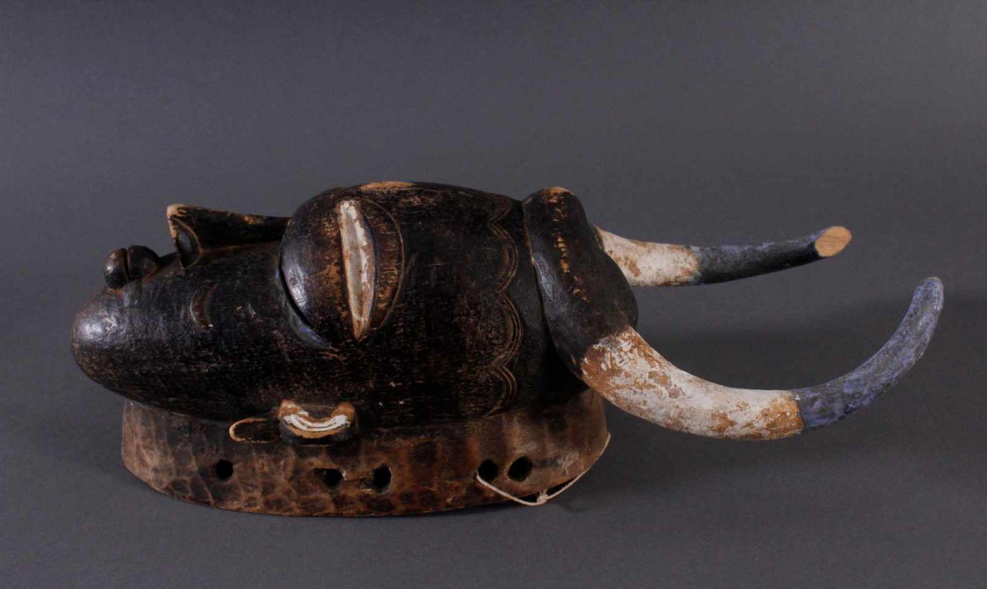 Antike Maske, Kamerun. Büffelmaske 1. Hälfte 20. Jh.Holz geschnitzt, Reste von weißer Farbe, - Bild 3 aus 4