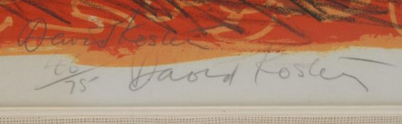 David Koster, by and after, Pheasants, signed in pencil, coloured print, limited edition 46/75