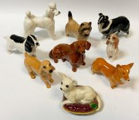 Beswick Dog Models - Chihuahua on a cushion; Daschund; Corgi; Border Collie; Poodle; others. (9)