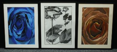 Contemporary School Botanical Study, of a Rose monochrome charcoal and collage on paper, 57cm x