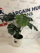 Artificial Cheese Plant In Glazed Pot RRP £39.50