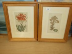 Pair of Framed Antique Prints 12 x 15 inches