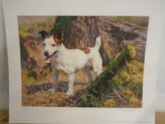 "Sally Mitchell limited edition print 6/195 of a terrier ""All Set"" by Frederick J Haycock"