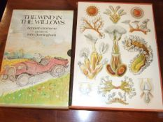 Life Richard Fortey and The Wind in the Willows Grahame & Burningham