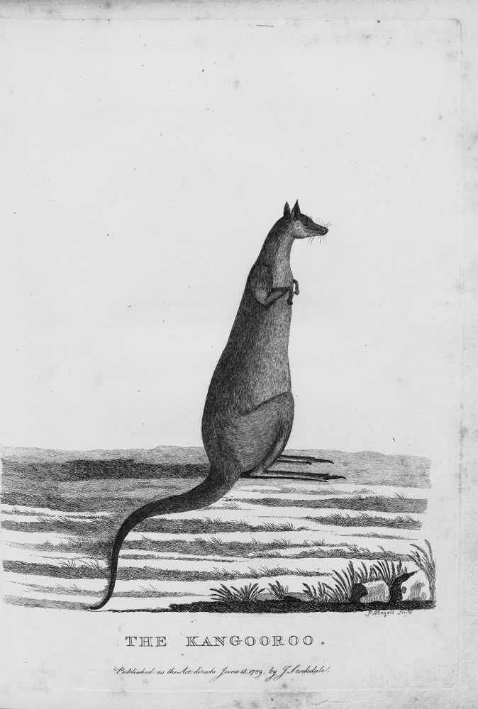 Lot 14 - Phillip, Arthur: The Voyage to Botany Bay