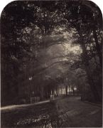 """Vogel, Hermann Wilhelm: Bilder aus dem Thiergarten """"Bilder aus dem Thiergarten. Nach der Natur Photographirt"""", Dr. H. Vogel. 1866. 10 arch-topped, gold-toned albumen prints. Each circa 23,3 x 18,7 cm and 18,6 x 23,2 cm. Each mounted to board (some edge wear, time-stained in edges, some with repaired tears, some foxing) with printed title and photographer's name below the image on the mount and paper label with title and number in lower right corner of mount. In original red canvas portf..."""