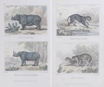 Pair of framed bookplates depicting the rhinoceros, the two horned rhinoceros, the black tiger and