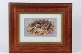 Morris J Pledger (B1955), woodcock, signed watercolour, housed in a stained pine and glazed frame,