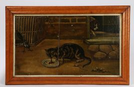 19th Century Primitive school, a cat eating from a dish with a magpie and a dog looking on, unsigned