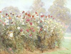 Beatrice Parsons (British, 1870-1955) 'Single Dahlias, Kew'