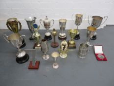 A collection of trophies and commemorative pieces ((Qty))