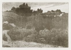 Robert Bevan (British, 1865-1925) On the Edge of Exmoor Lithograph printed in sepia, circa 1899, ...