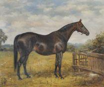 Geoffrey Douglas Giles (Karachi 1857 – England/Inghilterra 1923)