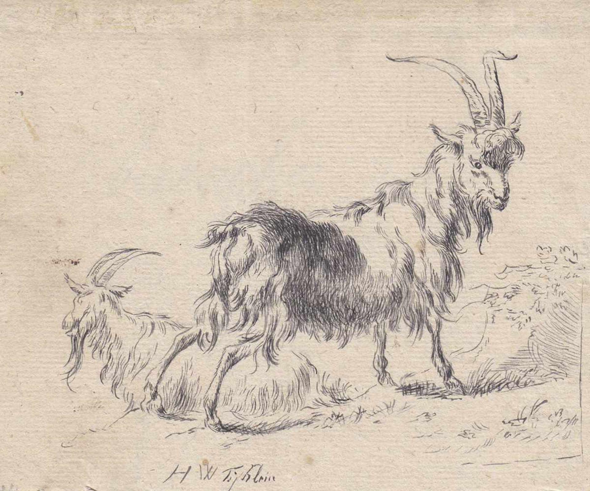 Johann Heinrich Wilhelm Tischbein (Haina 1751 – Eutin 1829)