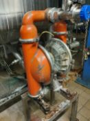 Wilden M15 Stainless Steel Diaphragm Pump