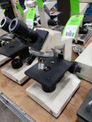 Olympus CH microscope.