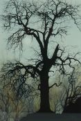 """Tina Holley BA(Hons) (British, B.1951) """"Winter Tree"""", watercolour, signed to lower right, artist"""