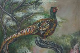 """Murray Pickles """"Pheasants"""" Two Oils on Canvas, Signed, 35cm x 44cm, In a gilt frame, (2)"""