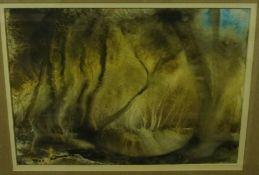 """McGrory """"Landscape Scenes"""" Two Watercolours, 21.5cm x 31.5cm, 24.5cm x 34.5cm, (2)"""