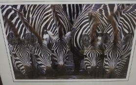 """R Wickenden """"Serengeti"""" Signed Print, Signed in Pencil, 51cm x 76cm"""
