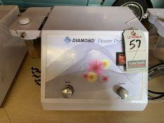 DIAMOND MICRODERMABRASION MACHINE, S/N DFP-2010-002
