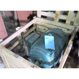 Unused Leeson 100hp motor