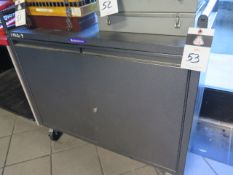 Rolling Cabinet (SOLD AS-IS - NO WARRANTY)