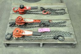 Lot-(2) Dayton 3/4-Ton and (1) Coffing 3/4-Ton Capacity Ratcheting Chain Hoists on (1) Pallet