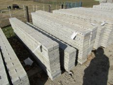 """(11) 8"""" x 8' Precise Concrete Forms, Textured Brick 8"""" Hole Pattern, Located in Winterset, IA"""
