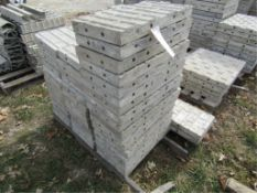 """(17) 12"""" x 2' Precise Concrete Forms, Textured Brick 8"""" Hole Pattern, Located in Winterset, IA"""