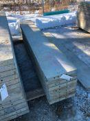 """(9) 16"""" x 9' Symons Silver Aluminum Concrete Forms"""