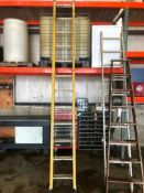 Warner 24' Fiberglass Extension Ladder