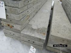 """(3) 10"""" x 9' Durand Aluminum Concrete Forms, Smooth 8"""" Hole Pattern, Located in Waldo, WI"""