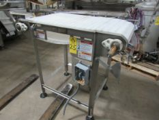 """Stainless Steel Conveyor, 22"""" W X 48"""" L plastic belt, 42"""" tall with levelers, no drive motor"""