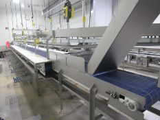 """Stainless Steel Boning Conveyor, 20"""" W X 37' L main belt, 8-work stations each side with"""