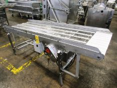 """Stainless Steel Incline Conveyor, 30"""" W X 8' L stainless steel ladder chain belt, 30"""" infeed, 39"""""""