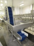 "FS Group Stainless Steel Loading Hopper/Incline Conveyor, 4' W X 5' L X 3' D hopper with 18"" W"