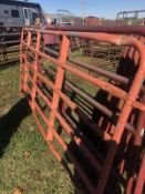 12 BENT CATTLE PANELS