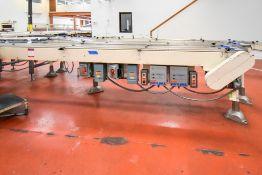 Double Conveyor Line (1)
