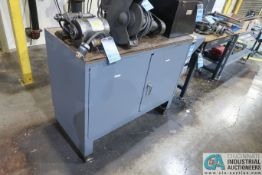 TWO-DOOR COUNTER HEIGHT STEEL CABINET WITH WOOD TOP **DELAY REMOVAL**